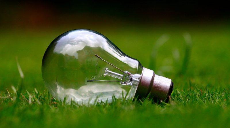 ampoule posée sur l'herbe